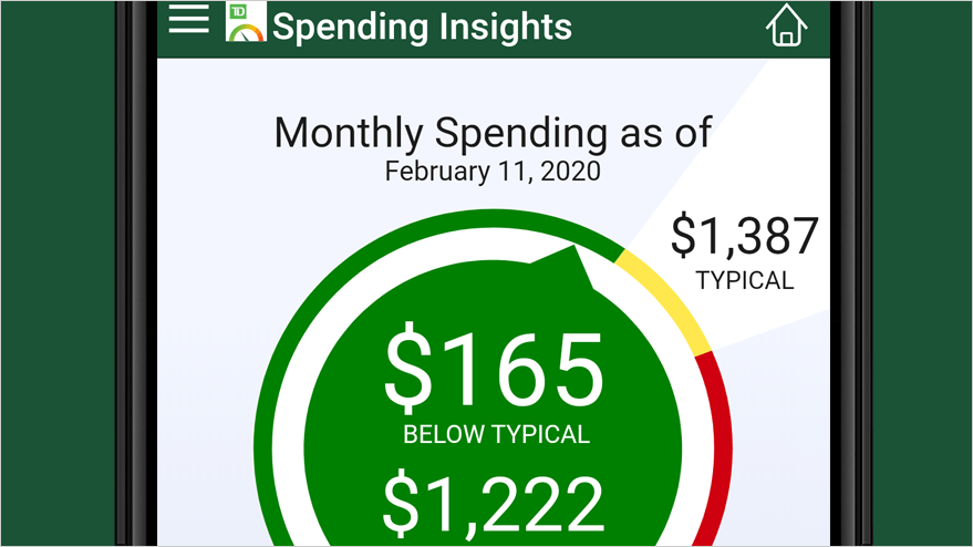 查看Spending Insights Meter