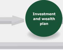 Investment and wealth plan