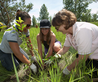 photo of Canadian post-secondary students planting trees
