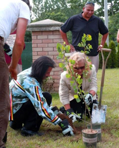 Photo of planting a tree