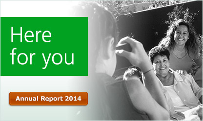 Built on strength. Focused on the Future. Annual Report 2013.
