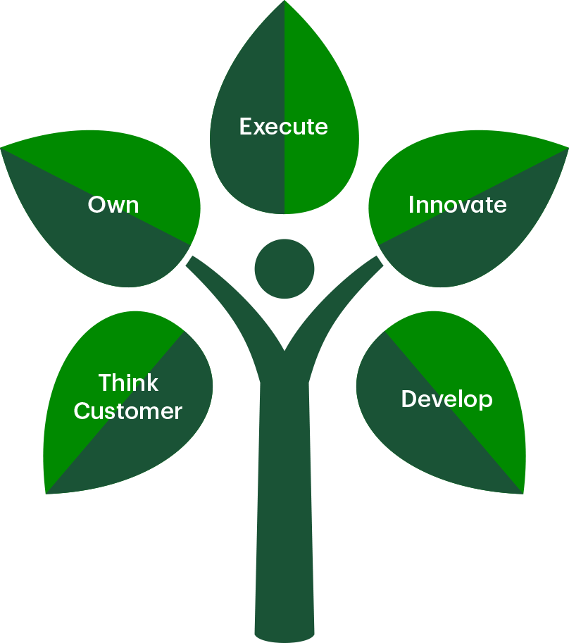 Think customer, own, execute, innovate, and develop