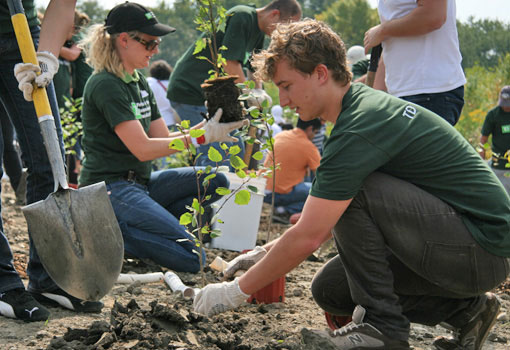 TD employees planting trees
