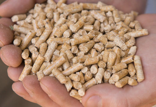 Image of biofuel pellets