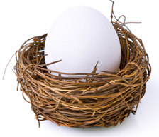Image of a nest egg