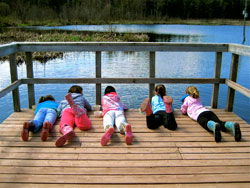 Photo of children lying down on a dock