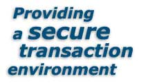 Providing a secure transaction environment